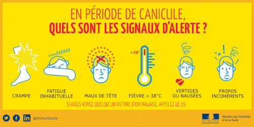 CANICULE-Tw-11.png